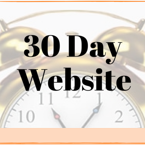 get new website in 30 day website