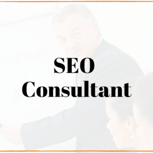 local milwaukee seo consultant service