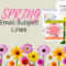 139 Spring Email Subject Line Ideas Theme